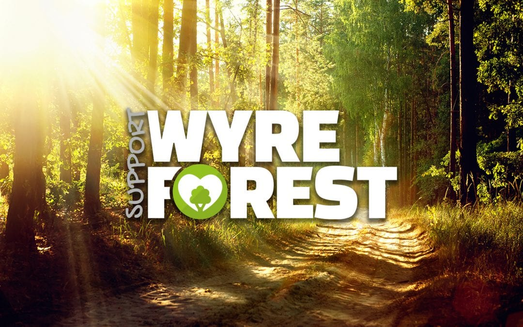 Supporting Wyre Forest Businesses